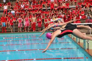 traditions houses swimming carnival